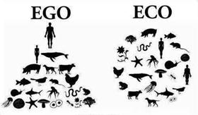 Eco Ego